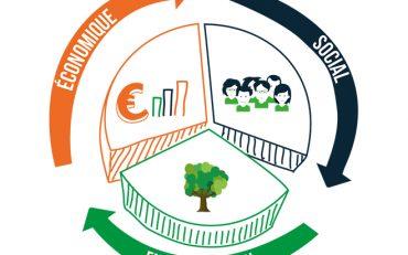 Tout savoir sur l'économie circulaire