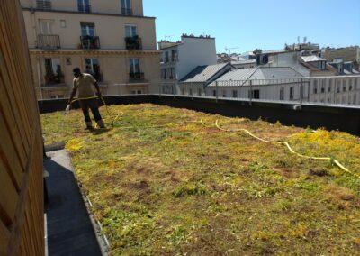 Envie Le Labo : photo de la pose de la toiture végétalisée